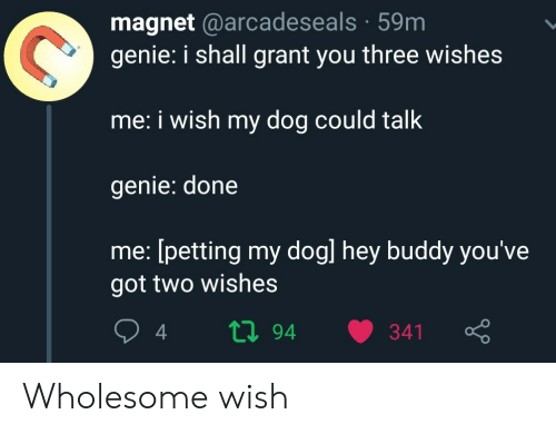 petting: magnet @arcadeseals 59m  genie: i shall grant you three wishes  me: i wish my dog could talk  genie: done  me: [petting my dogl hey buddy you've  got two wishes  ti94  341 Wholesome wish