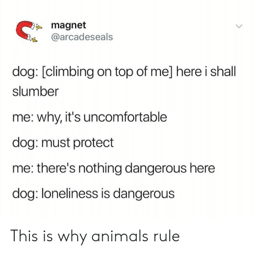 Animals, Climbing, and Loneliness: magnet  @arcadeseals  dog: [climbing on top of me] here i shall  slumber  me: why, it's uncomfortable  dog: must protect  me: there's nothing dangerous here  dog: loneliness is dangerous This is why animals rule