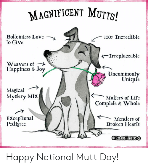 Life, Love, and Memes: MAGNIFICENT MUTTS!  Boitomless Love  to Give  100 Incredible  Irreplaceable  Weavers of  Happiness & Joy  Uncommonly  Unique  Magical  Myslery MiX  Makers of Life  Complele & Whole  EXceplional  Pediğree  Menders of  Broken Hearts  OREDANDHOWLING Happy National Mutt Day!