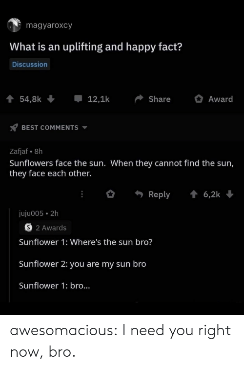 Tumblr, Best, and Blog: magyaroxcy  What is an uplifting and happy fact?  Discussion  54,8k  12,1k  Share  Award  BEST COMMENTS  Zafjaf 8h  Sunflowers face the sun. When they cannot find the sun,  they face each other.  6,2k  Reply  juju005 2h  S 2 Awards  Sunflower 1: Where's the sun bro?  Sunflower 2: you are my sun bro  Sunflower 1: bro... awesomacious:  I need you right now, bro.