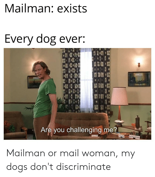 Dogs, Mail, and Dank Memes: Mailman: exists  Every dog ever:  Are you challenging me?  ww  Tae Mailman or mail woman, my dogs don't discriminate