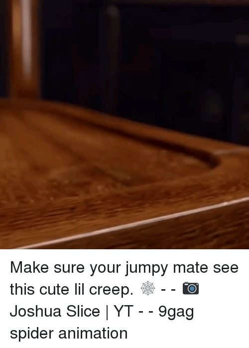 jumpy: Make sure your jumpy mate see this cute lil creep. 🕸 - - 📷Joshua Slice | YT - - 9gag spider animation