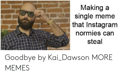 Dank, Instagram, and Meme: Making a  single meme  that Instagram  normies can  steal Goodbye by Kai_Dawson MORE MEMES