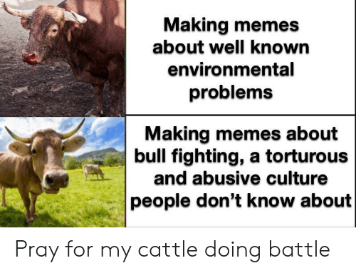 Memes, Dank Memes, and Culture: Making memes  about well known  environmental  problems  Making memes about  bull fighting, a torturous  and abusive culture  people don't know about Pray for my cattle doing battle