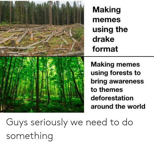 Drake, Memes, and World: Making  memes  using the  drake  format  Making memes  using forests to  bring awareness  to themes  deforestation  around the world Guys seriously we need to do something
