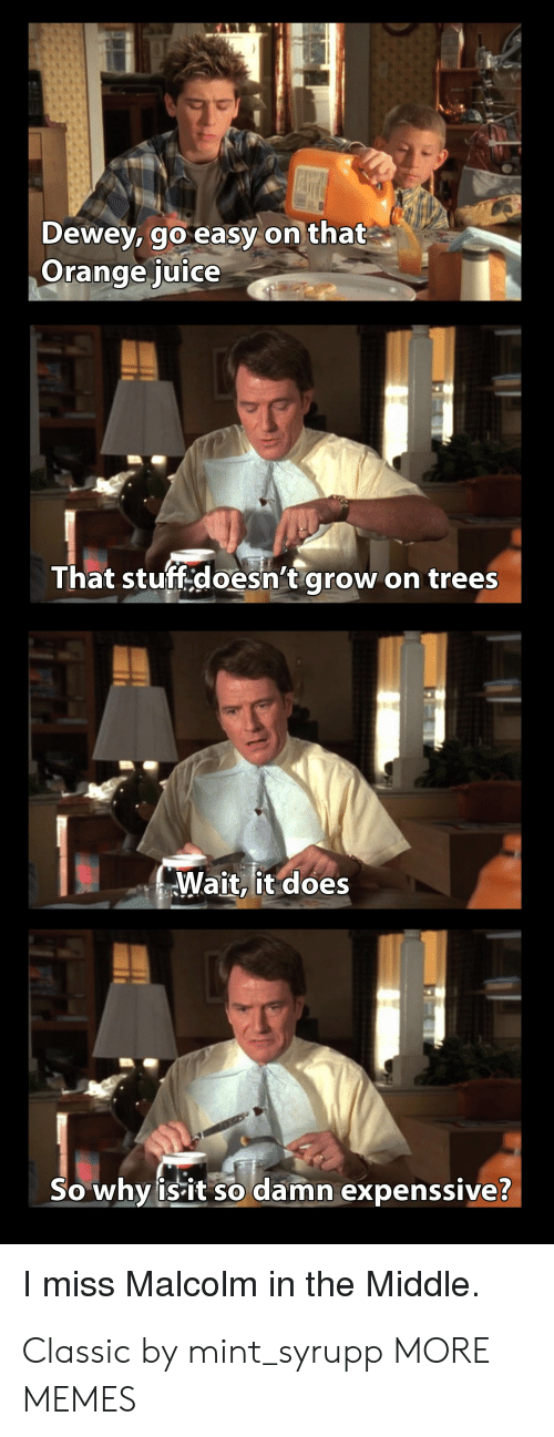 Dank, Dewey, and Juice: MALL  Dewey, go easy on that  Orange juice  That stuff.doesn't grow  on trees  Wait, it does  So why isit so damn expenssive?  I miss Malcolm in the Middle Classic by mint_syrupp MORE MEMES