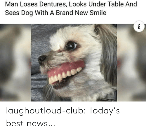 Club, News, and Tumblr: Man Loses Dentures, Looks Under Table And  Sees Dog With A Brand New Smile laughoutloud-club:  Today's best news…