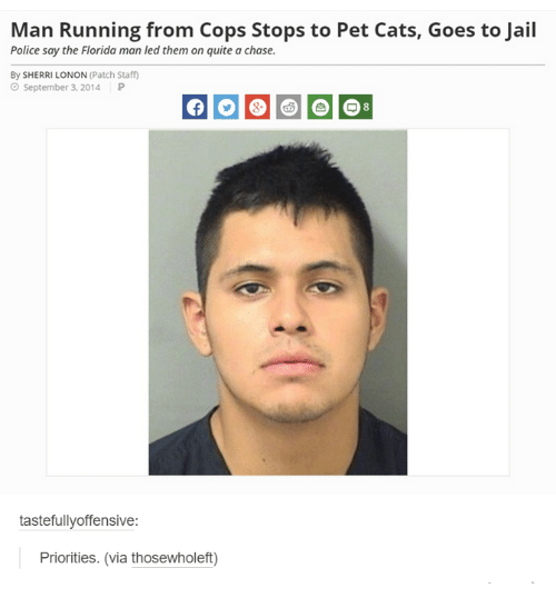 Petting Cat: Man Running from Cops Stops to Pet Cats, Goes to Jail  Police say the Florida man led them on quite a chase.  By SHERRI LONON (Patch Staff  September 3, 2014  P  tastefully offensive  Priorities. (via thosewholeft)