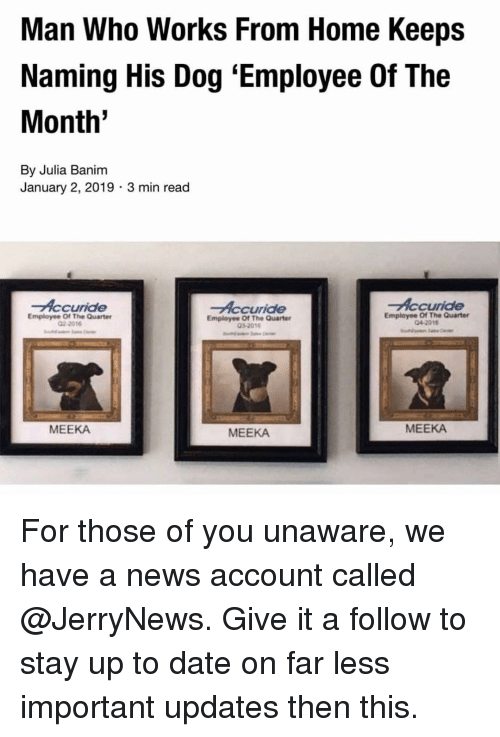 up to date: Man Who Works From Home Keeps  Naming His Dog 'Employee Of The  Month  By Julia Banim  January 2, 2019 3 min read  Accuride  Accuride  Accuride  Employee Of The Quarter  02-2016  Employee Of The Quarter  032018  Employee Of The Quarter  04-2016  MEEKA  MEEKA  MEEKA For those of you unaware, we have a news account called @JerryNews. Give it a follow to stay up to date on far less important updates then this.