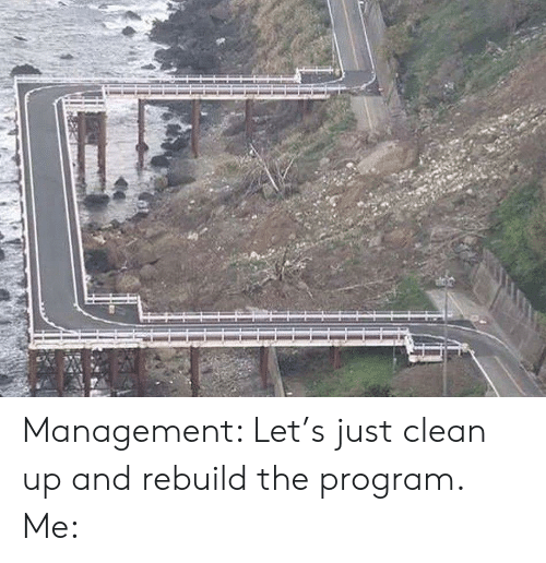 Management, Program, and Clean: Management: Let's just clean up and rebuild the program. Me: