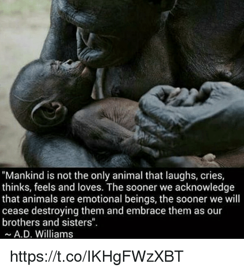 """Laughing Crying: """"Mankind is not the only animal that laughs, cries,  thinks, feels and loves. The sooner we acknowledge  that animals are emotional beings, the sooner we will  cease destroying them and embrace them as our  brothers and sisters"""".  A. D. Williams https://t.co/IKHgFWzXBT"""