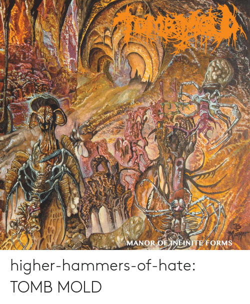 manor: MANOR OF NEINITE FORMS higher-hammers-of-hate:  TOMB MOLD