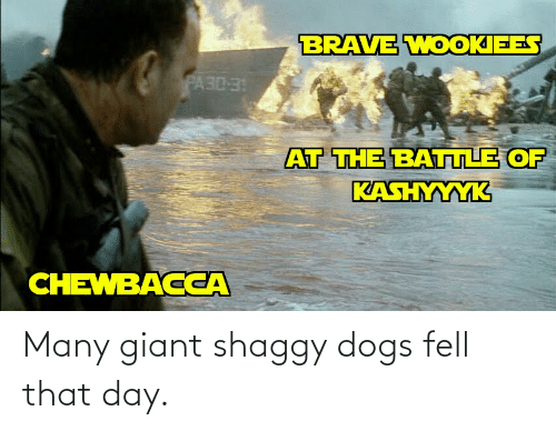 shaggy: Many giant shaggy dogs fell that day.