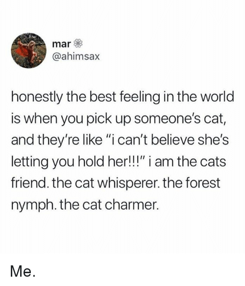 "Cats, Memes, and Best: mar  @ahimsax  honestly the best feeling in the world  is when you pick up someone's cat,  and they're like ""i can't believe she's  letting you hold her!!!"" i am the cats  friend. the cat whisperer. the forest  nymph. the cat charmer. Me."