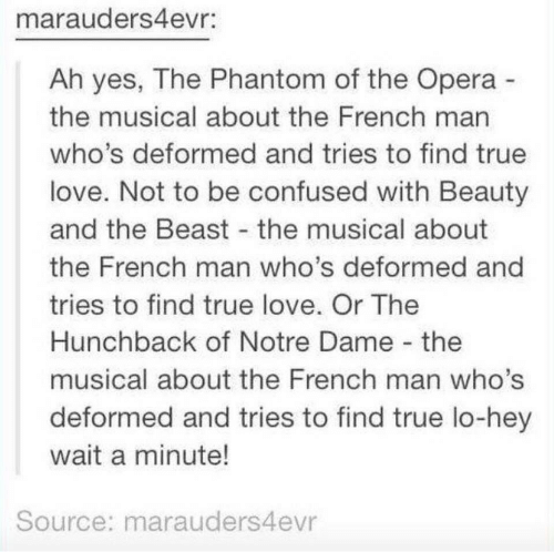 Confused, Love, and True: marauders4evr:  Ah yes, The Phantom of the Opera  the musical about the French man  who's deformed and tries to find true  love. Not to be confused with Beauty  and the Beast the musical about  the French man who's deformed and  tries to find true love. Or The  Hunchback of Notre Dame the  musical about the French man who's  deformed and tries to find true lo-hey  wait a minute!  Source: marauders4evr