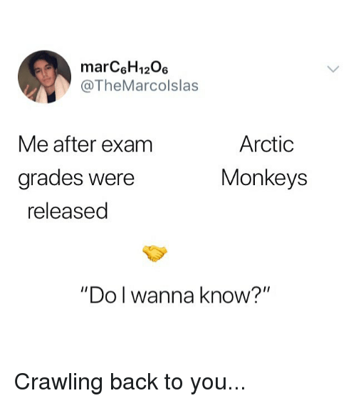"arctic monkeys: marC6H1206  @TheMarcolslas  Arctic  Monkeys  Me after exam  grades Were  released  ""Do l wanna know?"" Crawling back to you..."