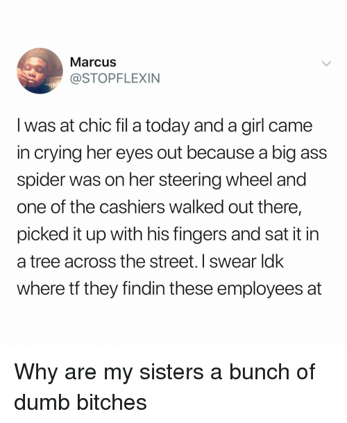 dumb bitches: Marcus  @STOPFLEXIN  -IN  I was at chic fil a today and a girl came  in crying her eyes out because a big ass  spider was on her steering wheel and  one of the cashiers walked out there,  picked it up with his fingers and sat it in  a tree across the street. I swear ldk  where tf they findin these employees at Why are my sisters a bunch of dumb bitches