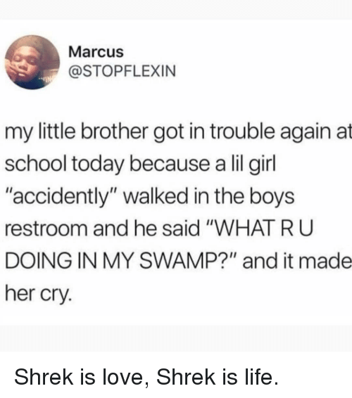 "Lil Girl: Marcus  @STOPFLEXIN  my little brother got in trouble again at  school today because a lil girl  ""accidently"" walked in the boys  restroom and he said ""WHAT R U  DOING IN MY SWAMP?"" and it made  her cry. Shrek is love, Shrek is life."