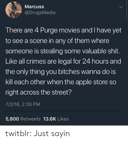 Is Kill: Marcuss  @DrugsMedia  There are 4 Purge movies and I have yet  to see a scene in any of them where  someone is stealing some valuable shit.  Like all crimes are legal for 24 hours and  the only thing you bitches wanna do is  kill each other when the apple store so  right across the street?  7/2/18, 2:35 PM  5,800 Retweets 13.6K Likes twitblr:  Just sayin