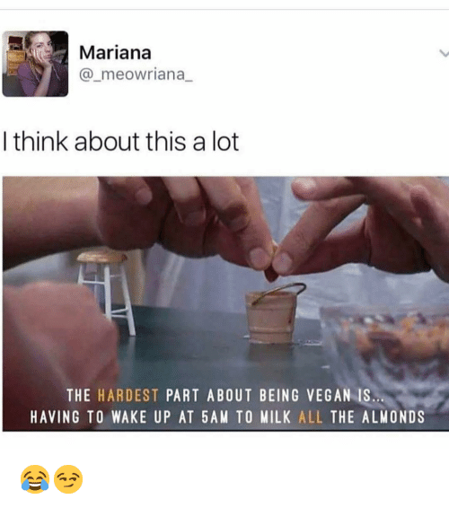 Mariana: Mariana  @_meowriana_  I think about this a lot  THE HARDEST PART ABOUT BEING VEGAN IS  HAVING TO WAKE UP AT 5AM TO MILK ALL THE ALMONDS 😂😏