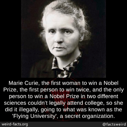 College, Facts, and Memes: Marie Curie, the first woman to win a Nobel  Prize, the first person to win twice, and the only  person to win a Nobel Prize in two different  sciences couldn't legally attend college, so she  did it illegally, going to what was known as the  Flying University', a secret organization  weird-facts.org  @factsweird