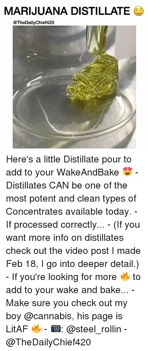 rollins: MARIJUANA DISTILLATE  @TheDailyChief420 Here's a little Distillate pour to add to your WakeAndBake 😍 - Distillates CAN be one of the most potent and clean types of Concentrates available today. - If processed correctly... - (If you want more info on distillates check out the video post I made Feb 18, I go into deeper detail.) - If you're looking for more 🔥 to add to your wake and bake... - Make sure you check out my boy @cannabis, his page is LitAF 🔥 - 📷: @steel_rollin - @TheDailyChief420