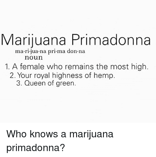 highness: Marijuana Primadonna  ma rl juana pri ma don na  noun  1. A female who remains the most high.  2. Your royal highness of hemp.  3. Queen of green Who knows a marijuana primadonna?