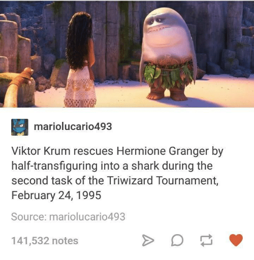 Sharked: mariolucario493  Viktor Krum rescues Hermione Granger by  half-transfiguring into a shark during the  second task of the Triwizard Tournament,  February 24, 1995  Source: mariolucario493  141,532 notes