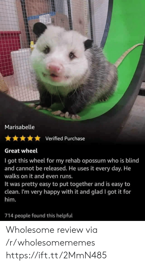 Put Together: Marisabelle  Verified Purchase  Great wheel  I got this wheel for my rehab opossum who is blind  and cannot be released. He uses it every day. He  walks on it and even runs.  pretty easy to put together and is easy to  clean. I'm very happy with it and glad I got it for  It was  him.  714 people found this helpful Wholesome review via /r/wholesomememes https://ift.tt/2MmN485