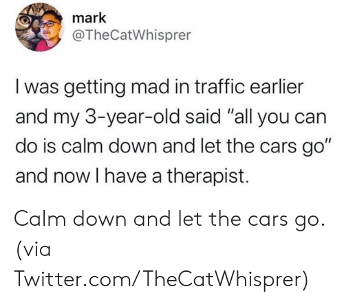 "3 Year Old: mark  @TheCatWhisprer  I was getting mad in traffic earlier  and my 3-year-old said ""all you can  do is calm down and let the cars go""  and now I have a therapist. Calm down and let the cars go.  (via Twitter.com/TheCatWhisprer)"