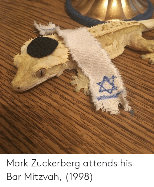 Mark Zuckerberg, Zuckerberg, and Bar: Mark Zuckerberg attends his Bar Mitzvah, (1998)