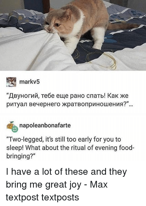 "Food, Memes, and Sleep: markv5  napoleanbonafarte  ""Two-legged, it's still too early for you to  sleep! What about the ritual of evening food-  bringing?"" I have a lot of these and they bring me great joy - Max textpost textposts"