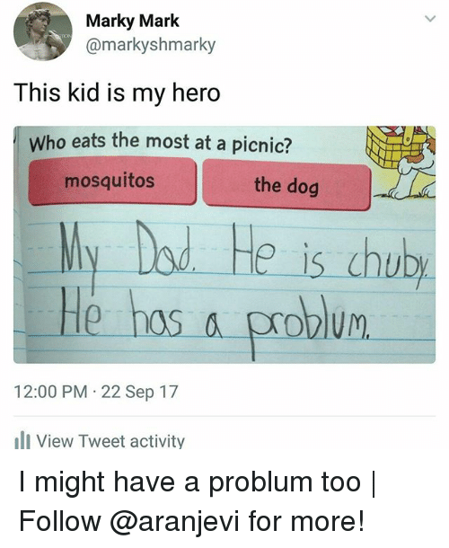 dod: Marky Mark  @markyshmarky  This kid is my hero  Who eats the most at a picnic?  mosquitos  the dog  Ny Dod He is chub  He hos a problum  12:00 PM 22 Sep 17  View Tweet activity I might have a problum too | Follow @aranjevi for more!