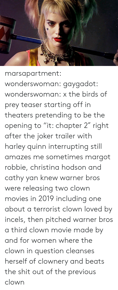 "trailer: marsapartment:  wonderswoman: gaygadot:   wonderswoman:   x the birds of prey teaser starting off in theaters pretending to be the opening to ""it: chapter 2″ right after the joker trailer with harley quinn interrupting still amazes me sometimes    margot robbie, christina hodson and cathy yan knew warner bros were releasing two clown movies in 2019 including one about a terrorist clown loved by incels, then pitched warner bros a third clown movie made by and for women where the clown in question cleanses herself of clownery and beats the shit out of the previous clown"