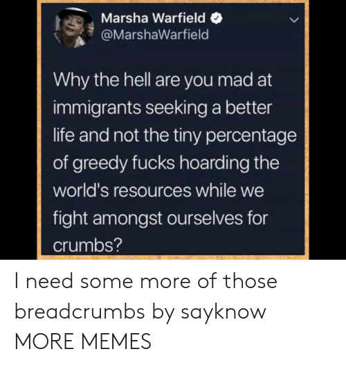 Dank, Life, and Memes: Marsha Warfield  @MarshaWarfield  Why the hell are you mad at  immigrants seeking a better  life and not the tiny percentage  of greedy fucks hoarding the  world's resources while we  fight amongst ourselves for  crumbs? I need some more of those breadcrumbs by sayknow MORE MEMES
