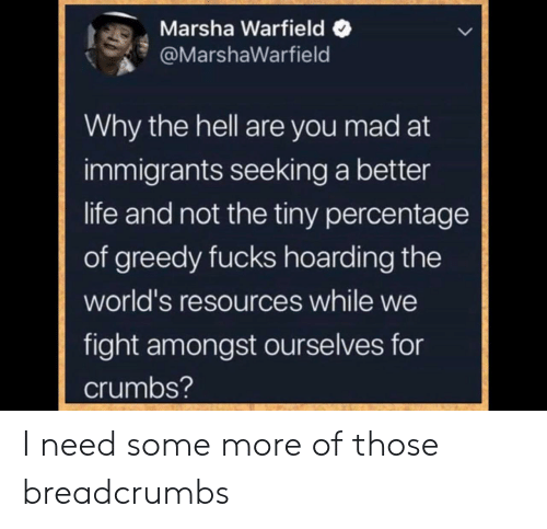 Life, Some More, and Mad: Marsha Warfield  @MarshaWarfield  Why the hell are you mad at  immigrants seeking a better  life and not the tiny percentage  of greedy fucks hoarding the  world's resources while we  fight amongst ourselves for  crumbs? I need some more of those breadcrumbs