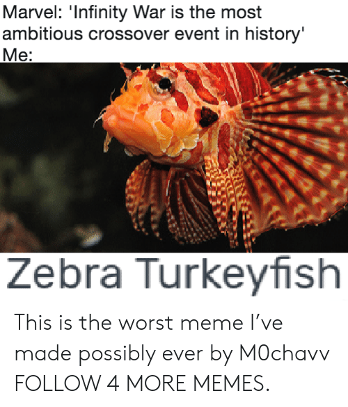 Most Ambitious Crossover: Marvel: 'Infinity War is the most  ambitious crossover event in history'  Me:  Zebra Turkeyfish This is the worst meme I've made possibly ever by M0chavv FOLLOW 4 MORE MEMES.