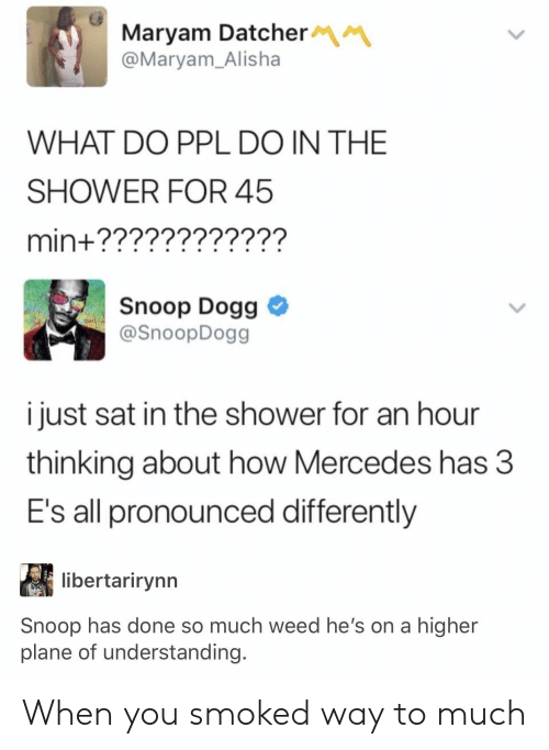 snoop dogg: Maryam Datcher  @Maryam_Alisha  WHAT DO PPL DO IN THE  SHOWER FOR 45  min+????????????  Snoop Dogg  @SnoopDogg  i just sat in the shower for an hour  thinking about how Mercedes has 3  E's all pronounced differently  libertarirynn  Snoop has done so much weed he's on a higher  plane of understanding. When you smoked way to much