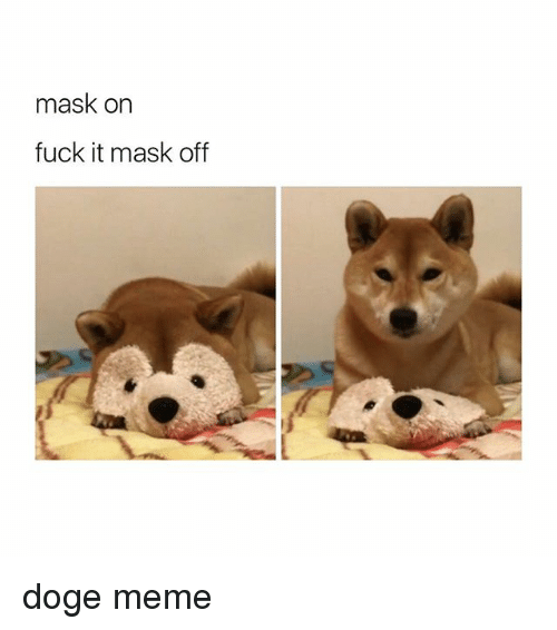 doges: mask on  fuck it mask off doge meme
