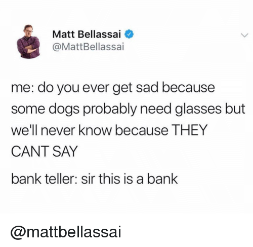Becaus: Matt Bellassai  @MattBellassai  me: do you ever get sad because  some dogs probably need glasses but  we'l e THEY  CANT SAY  bank teller: sir this is a bank  I never know becaus @mattbellassai