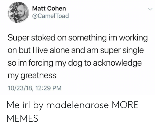 Being Alone, Dank, and Memes: Matt Cohen  @CamelToad  Super stoked on something im working  on but l live alone and am super single  so im forcing my dog to acknowledge  my greatness  10/23/18, 12:29 PM Me irl by madelenarose MORE MEMES