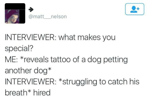 Tattoo: @matt__nelson  INTERVIEWER: what makes you  special?  ME: *reveals tattoo of a dog petting  another dog*  INTERVIEWER: *struggling to catch his  breath* hired