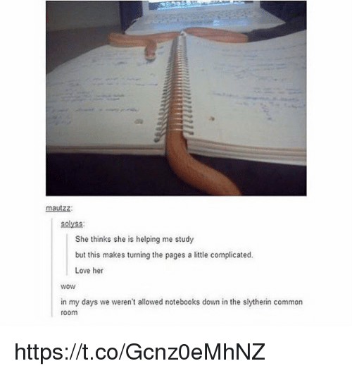 Love, Memes, and Slytherin: mautzz  solyss:  She thinks she is helping me study  but this makes turning the pages a little complicated.  Love her  wow  in my days we weren't allowed notebooks down in the slytherin common  room https://t.co/Gcnz0eMhNZ