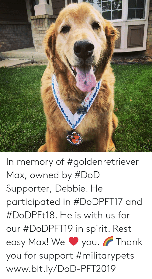 Memes, Thank You, and Spirit: MAX In memory of #goldenretriever Max, owned by #DoD Supporter, Debbie. He participated in #DoDPFT17 and #DoDPFt18. He is with us for our #DoDPFT19 in spirit. Rest easy Max! We ❤ you. 🌈 Thank you for support #militarypets www.bit.ly/DoD-PFT2019