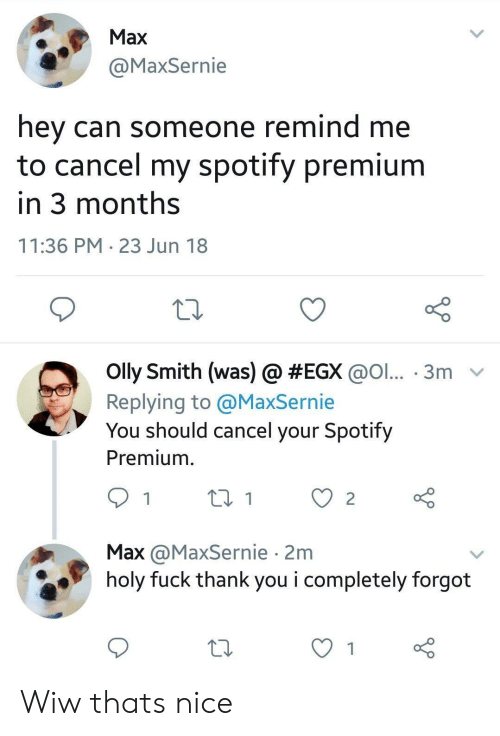 Spotify, Thank You, and Fuck: Max  @MaxSernie  hey can someone remind me  to cancel my spotify premium  in 3 months  11:36 PM 23 Jun 18  olly Smith (was) @ #EGX @ol...-3m-  Replying to @MaxSernie  You should cancel your Spotify  Premium.  Max @MaxSernie 2m  holy fuck thank you i completely forgot Wiw thats nice