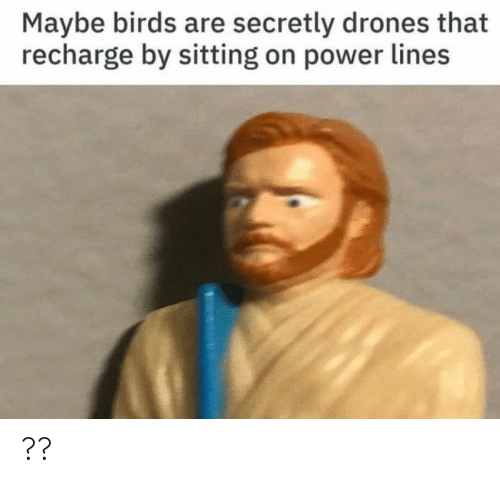 Birds, Drones, and Power: Maybe birds are secretly drones that  recharge by sitting on power lines ??