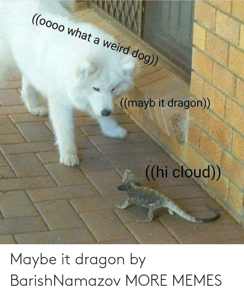 dragon: Maybe it dragon by BarishNamazov MORE MEMES