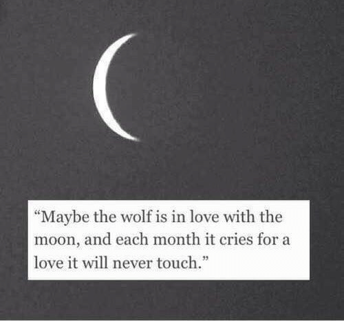 """Love, Moon, and Wolf: """"Maybe the wolf is in love with the  moon, and each month it cries for a  love it will never touch."""""""