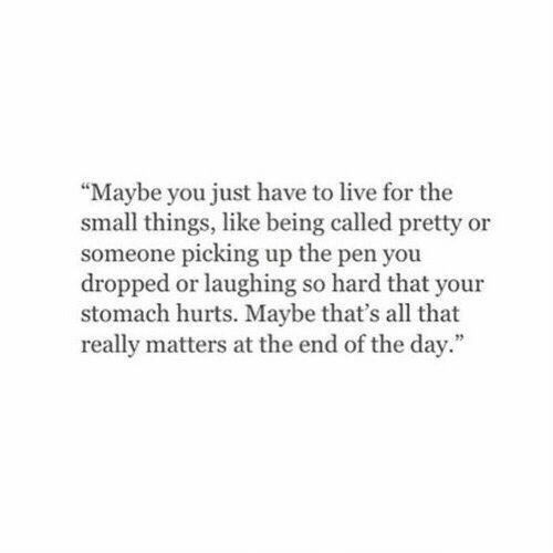"at the end of the day: ""Maybe you just have to live for the  small things, like being called pretty or  someone picking up the pen you  dropped or laughing so hard that your  stomach hurts. Maybe that's all that  really matters at the end of the day."