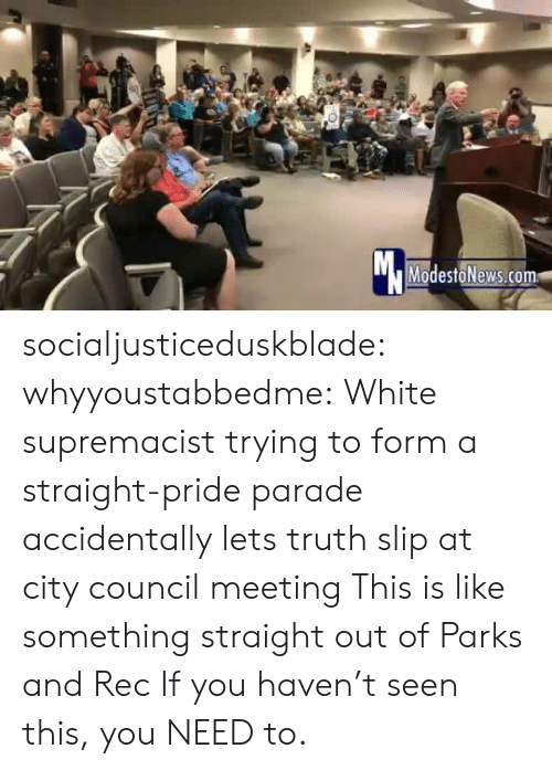 Council: Mc  ModestoNews.com socialjusticeduskblade: whyyoustabbedme:    White supremacist trying to form a straight-pride parade accidentally lets truth slip at city council meeting   This is like something straight out of Parks and Rec   If you haven't seen this, you NEED to.